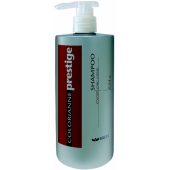BRELIL - Шампунь после окрашивания - Shampoo Colour Long Lasting, 750 мл