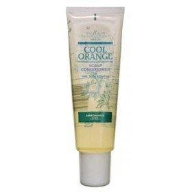 LEBEL COSMETICS Очиститель Холодный Апельсин для жирной кожи головы (Лебел Косметикс), 240 гр