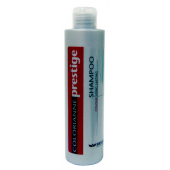 BRELIL - Шампунь после окрашивания - Shampoo Colour Long Lasting, 200 мл