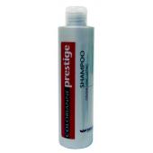 BRELIL - Шампунь после окрашивания - Shampoo Colour Long Lasting, 100 мл