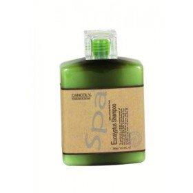 DANCOLY Эвкалиптовый шампунь для жирных и склонных к перхоти волос EUCALYPTUS SHAMPOO , 300 мл