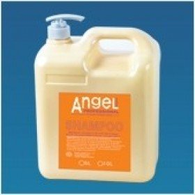 ANGEL PROFESSIONAL 5 Liters Shampoo - Шампунь для сухих и нейтральных волос, 5 л
